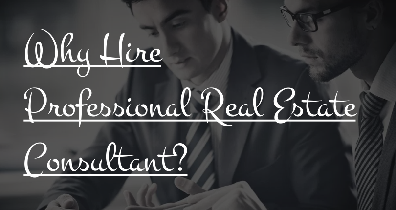 Why Hire a Professional Real Estate Consultant?